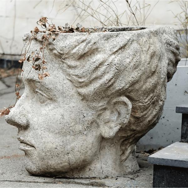doniczka głowa