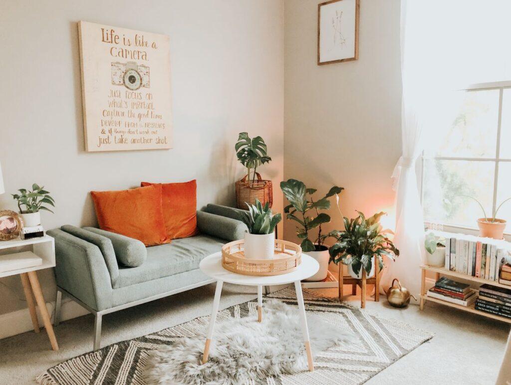 ciepły salon z dużą ilością roślin