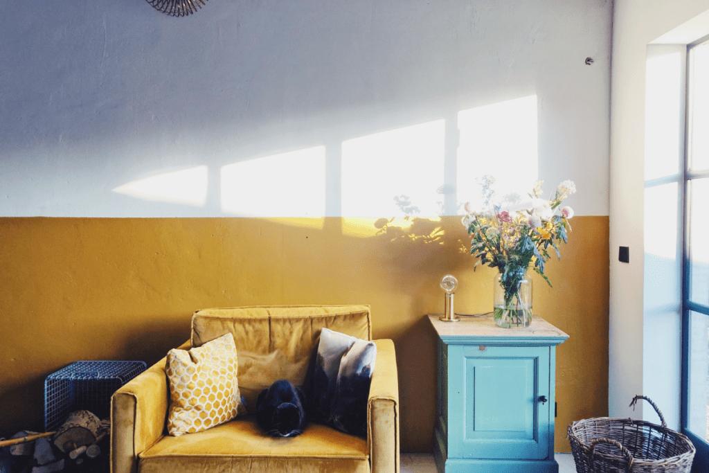Kolor musztardowy na ścianie
