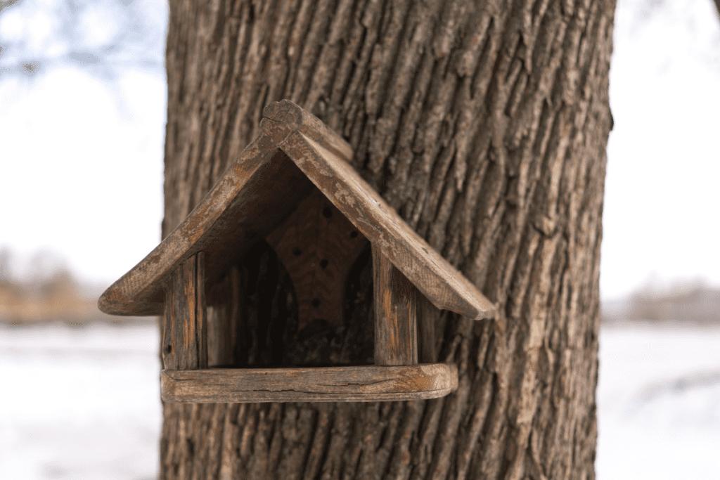 Karmnik przykręcony do drzewa