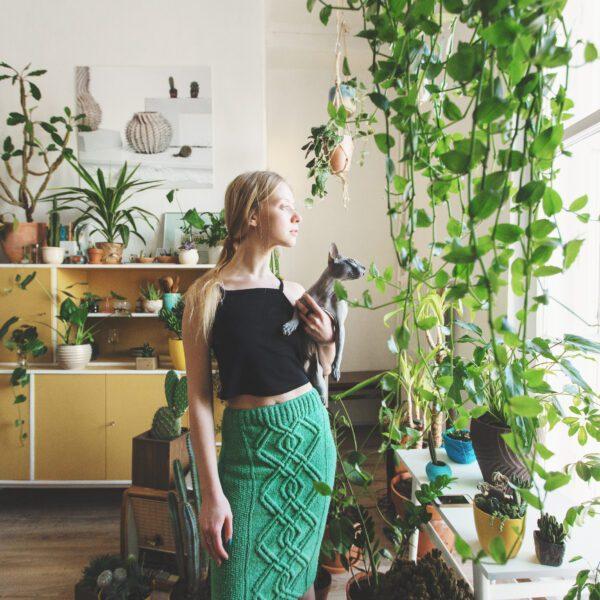 rośliny które oczyszczają